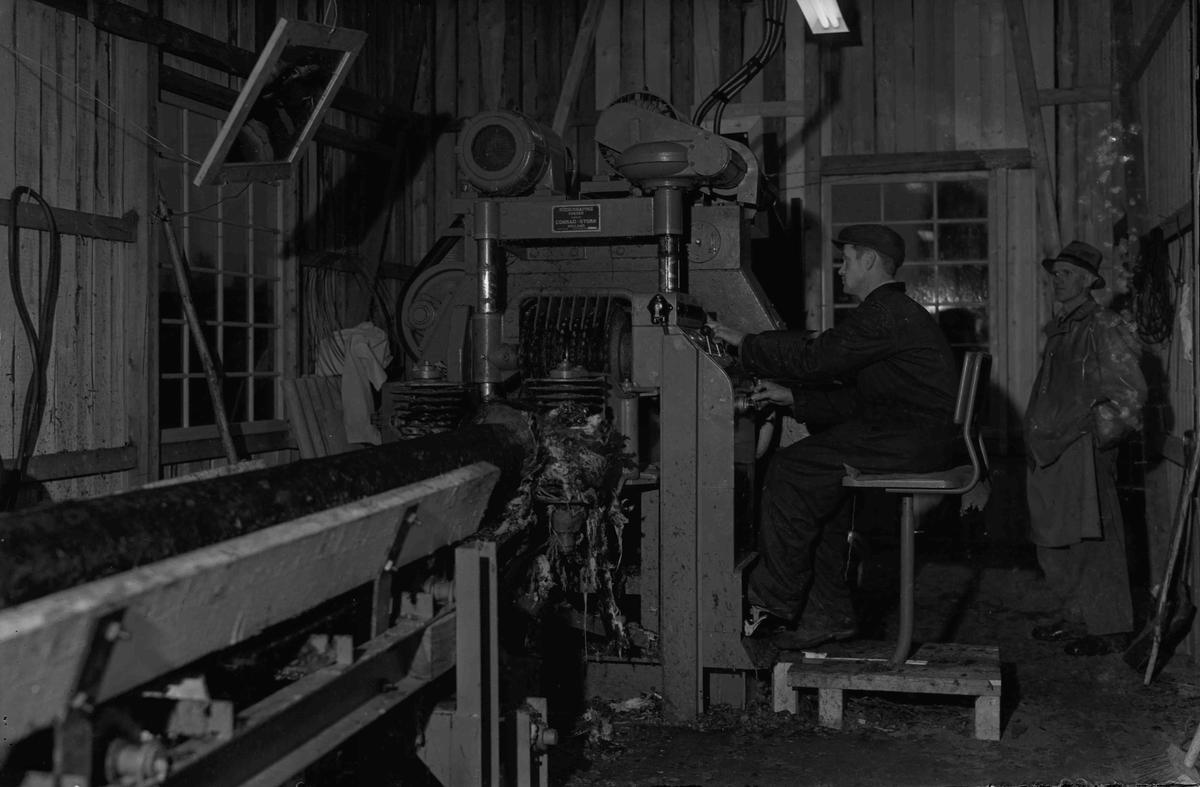 Barkemaskin. Eidsvold Værk ca. 1953. Ved maskinen sitter Erik Hellerud. Bak står Ivar Hellerud.
