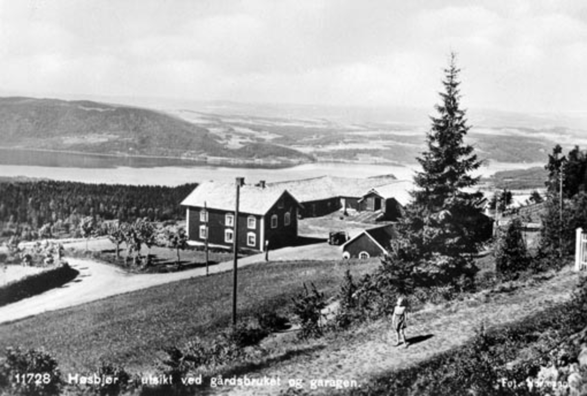 Eksteriør, gardsbruk, Høsbjør vestre, utsikt mot Furnesfjorden, Ringsaker.