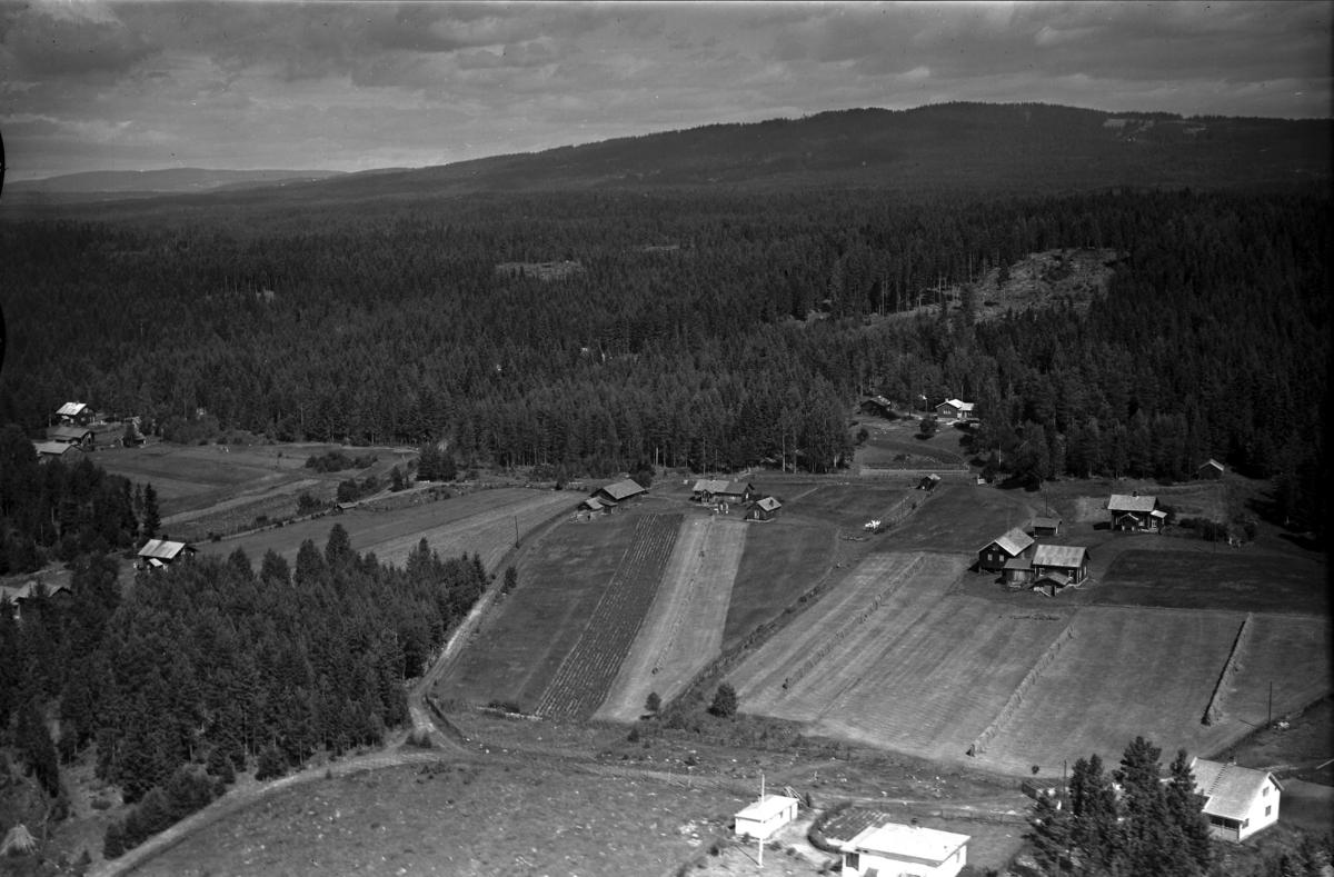 En gård