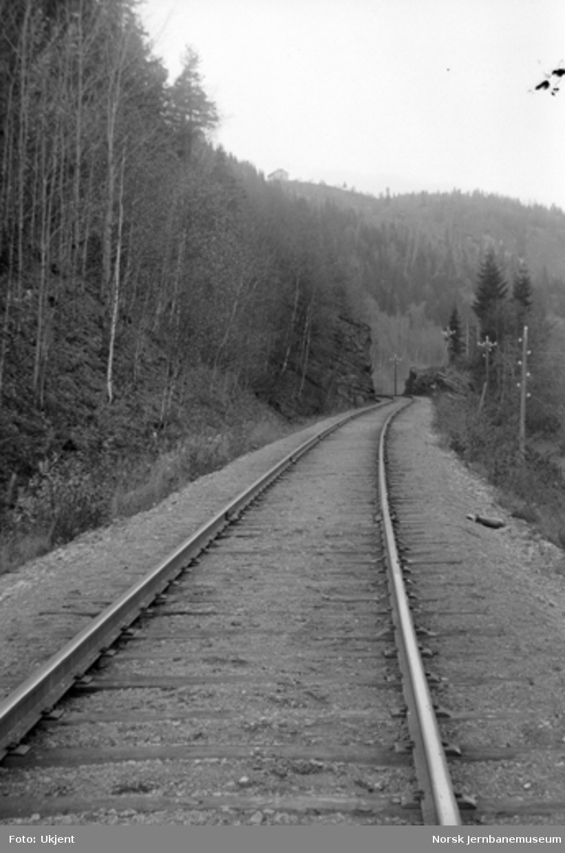 Linjeparti fra Eidsvoll - Dombåsbanen