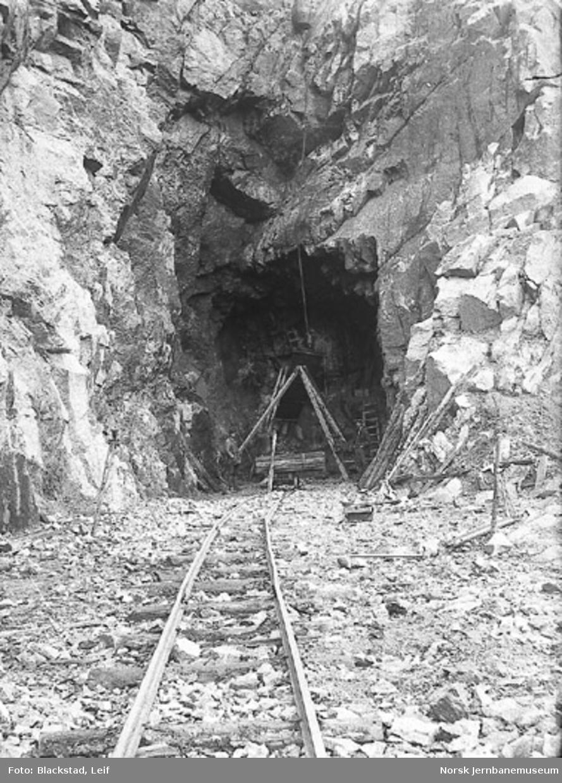 Ålekjær tunnel : overhvelving