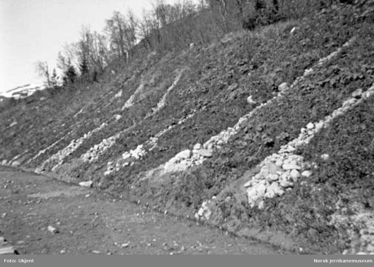 Rassikring av skråning på Nordlandsbaneanlegget