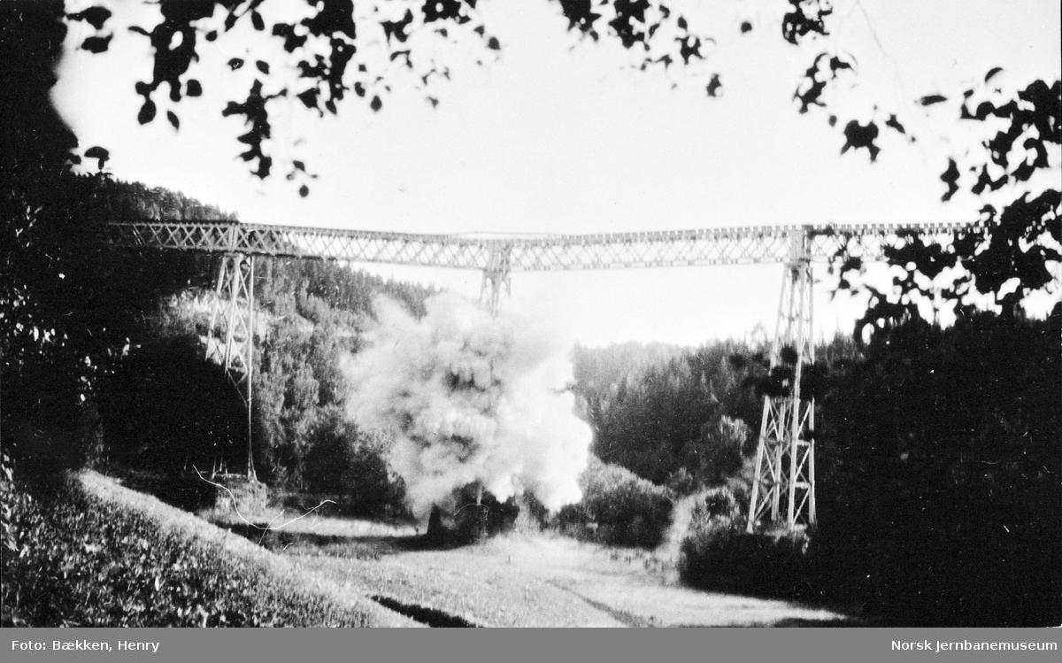 Ljansviadukten - sprengningen i 1929