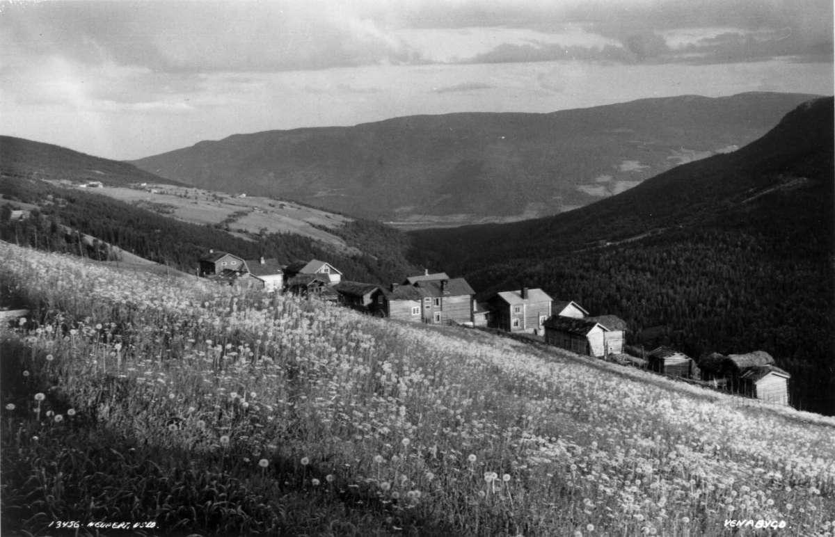 Venabygd, Sør-Fron 1935. Oersiktsbilde. Jordbruksbygd med gårdsanlegg. Tømmerhus. Omgitt av skog og åser.