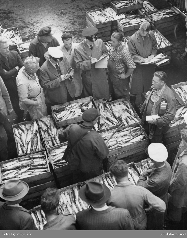 Fiskförsäljning, Göteborgs fiskhamn
