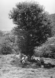 Måltid i skuggan under ett träd. Kvinnor i olika åldrar och en man sitter på en höjd och äter. Utsikt ner mot en stad. Troligen Grekland.