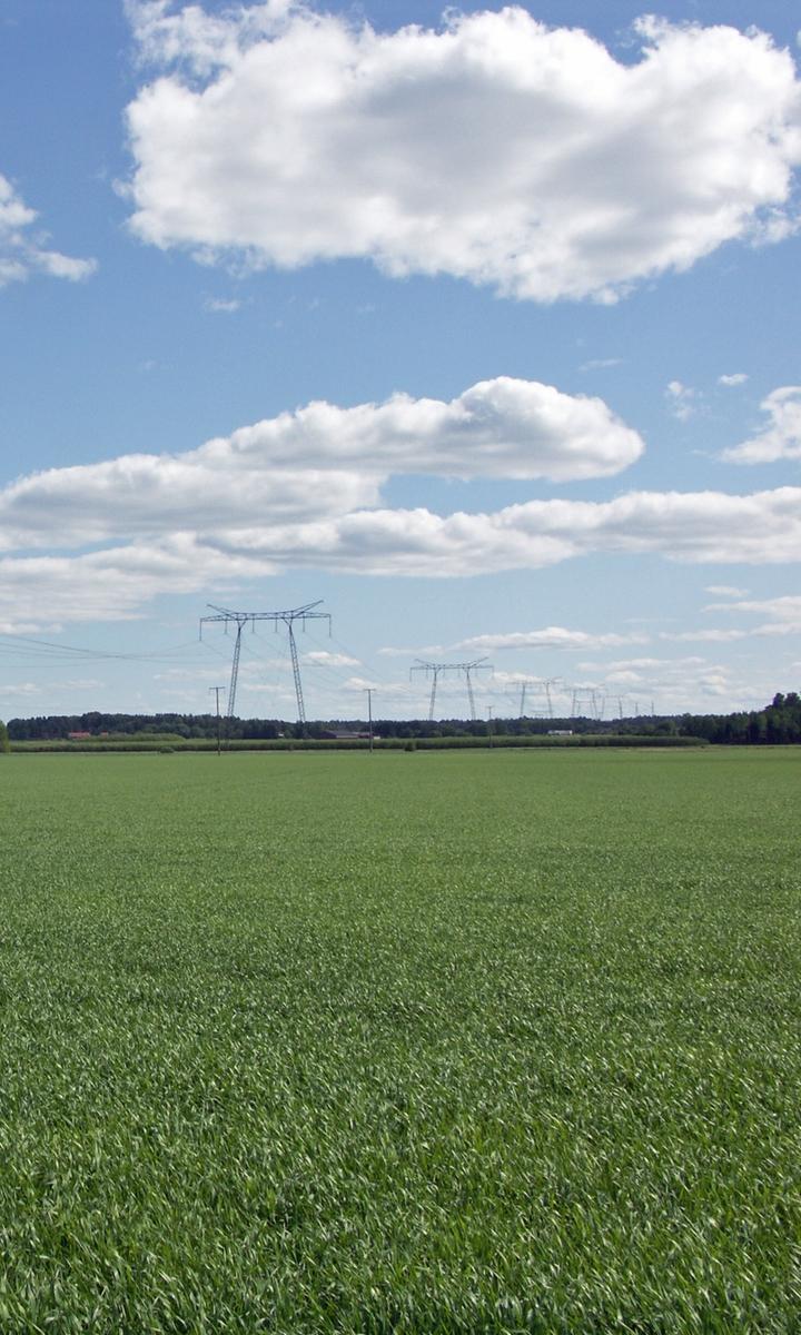 Granslätten med den stora kraftledningen, Övergrans socken, Uppland 2010