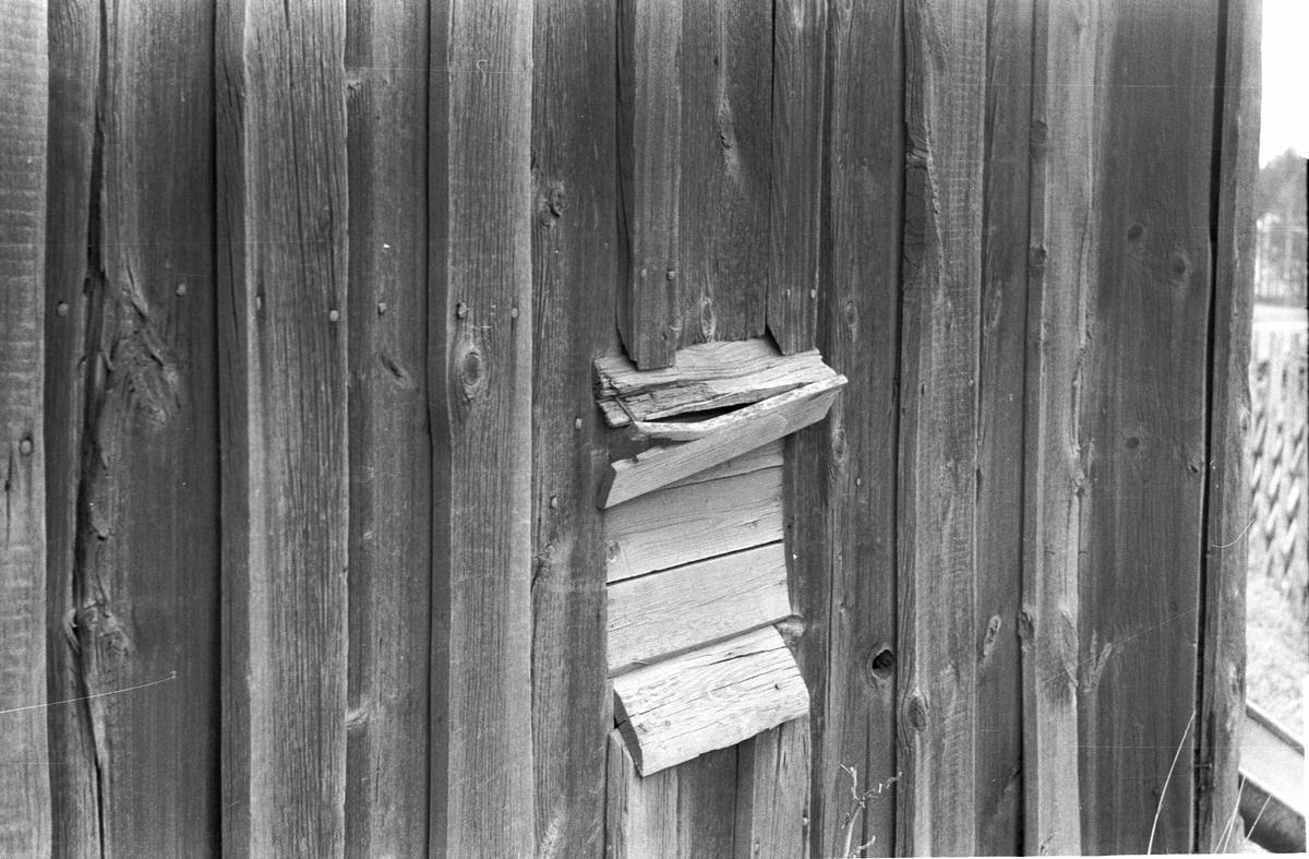 Före detta fähus, Husby 6:3, Husby, Lena socken, Uppland 1977