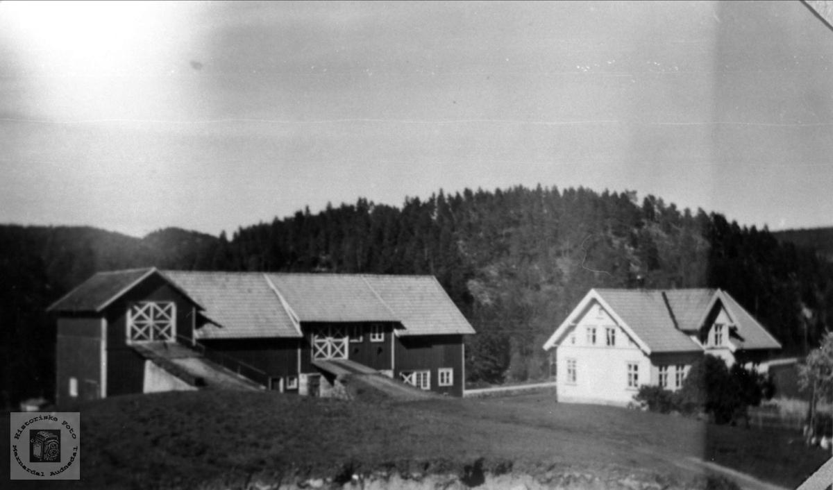 Garden Sølvskar i Bjelland.