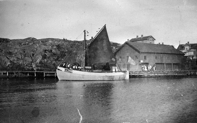 Grundsund. LL 759 Majblomman omkring 1927.