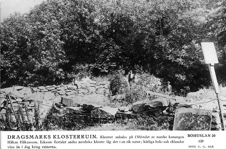 Sverigebilder. Svenska turistföreningen. Bohuslän 20. Foto: C. G. Alm. Dragsmarks Klosterruin. Klostret anlades på 1300-talet av norske konungen Håkan Håkansson. Liksom flertalet andra nordiska kloster låg det i en rik natur; härliga bok- och eklundar växa än i dag kring ruinerna.