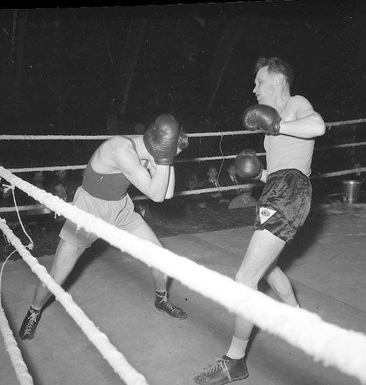 """Enligt notering: """"Boxning U-a 29/1 1955""""."""