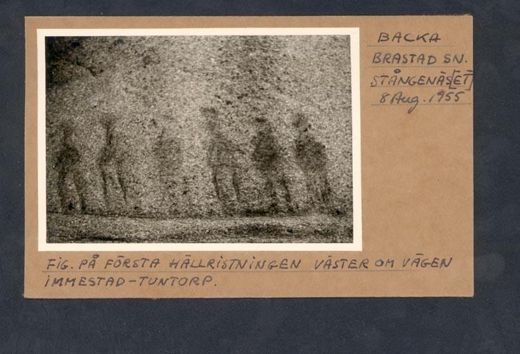 """Noterat på kortet: """"BACKA BRASTAD SN. STÅNGENÄS(ET) 8 Aug.1955"""". """"FIG. PÅ FÖRSTA HÄLLRISTNINGEN VÄSTER OM VÄGEN IMMESTAD - TUNTORP""""."""
