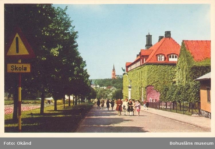 """Tryckt text på kortet: """"Mölndal. Centralskolan."""" """"Förlag: Mölndals Bokhandel. Hans E. Tuvesson."""""""