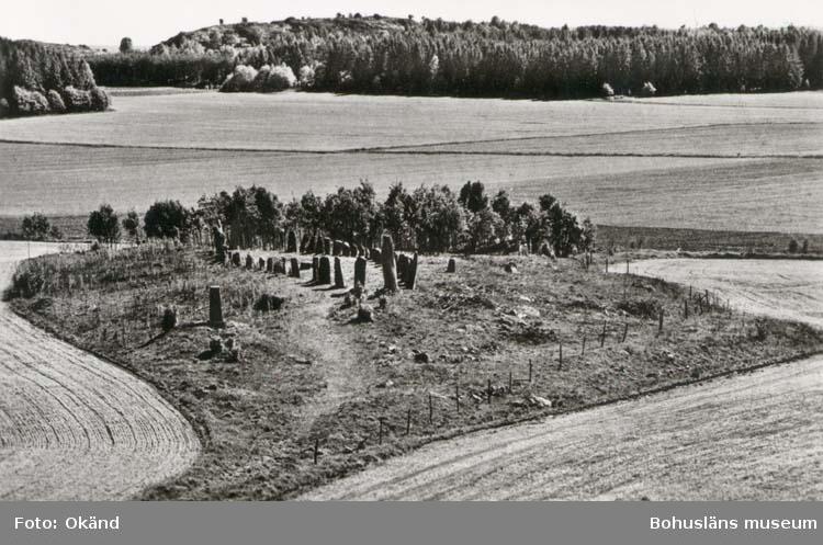 """Tryckt text på kortet: """"Skeppssättning vid Blomsholm, Skee socken (Vette kommun), Bohuslän, en av de största i landet, 42 m. lång. Fornlämningen, som omgives av gravhögar, utgör en grav från tiden omkr. 400-600 e. Kr. Enligt traditionen har den även använts som gravplats för soldater under Karl XII:s krig."""" Noterat på kortet: """"Blomsholm Skee Sn. Vette (Norrviken)."""""""