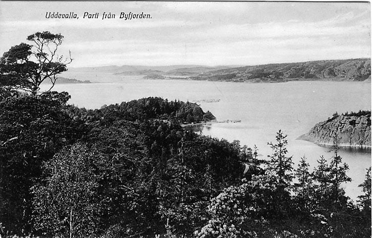 """Trykt text på vykortets framsida: """"Uddevalla, Parti från Byfjorden."""" ::"""