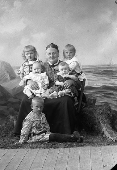 """Enligt fotografens journal nr 3 1916-1917: """"Hogström, Fru Stenung Här""""."""