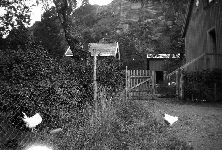 """Enligt fotografen: """"Skee, Beateberg, vid kökstrappan""""."""