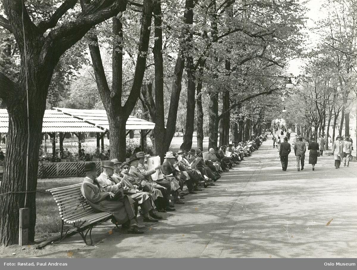 park, fortau, benker, mennesker, Pernille friluftsrestaurant