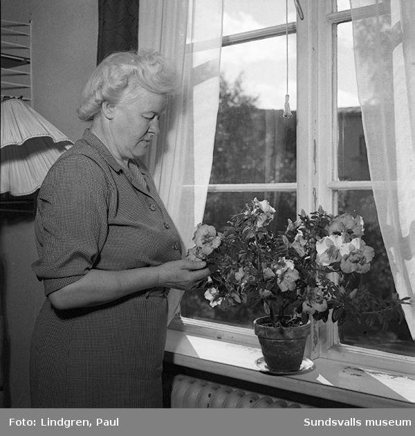Fru Fossum med vacker blomma.