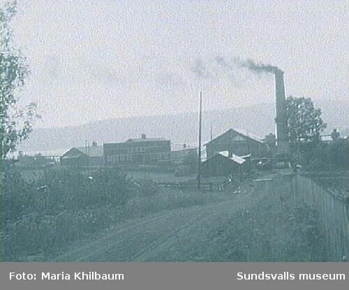 Alviks Träförädlings Aktiebolag bildades 1927. 1938 kompletterades sågverket med en plywoodfabrik där kryssfanér tillverkades. Verksamheten upphörde 1950.