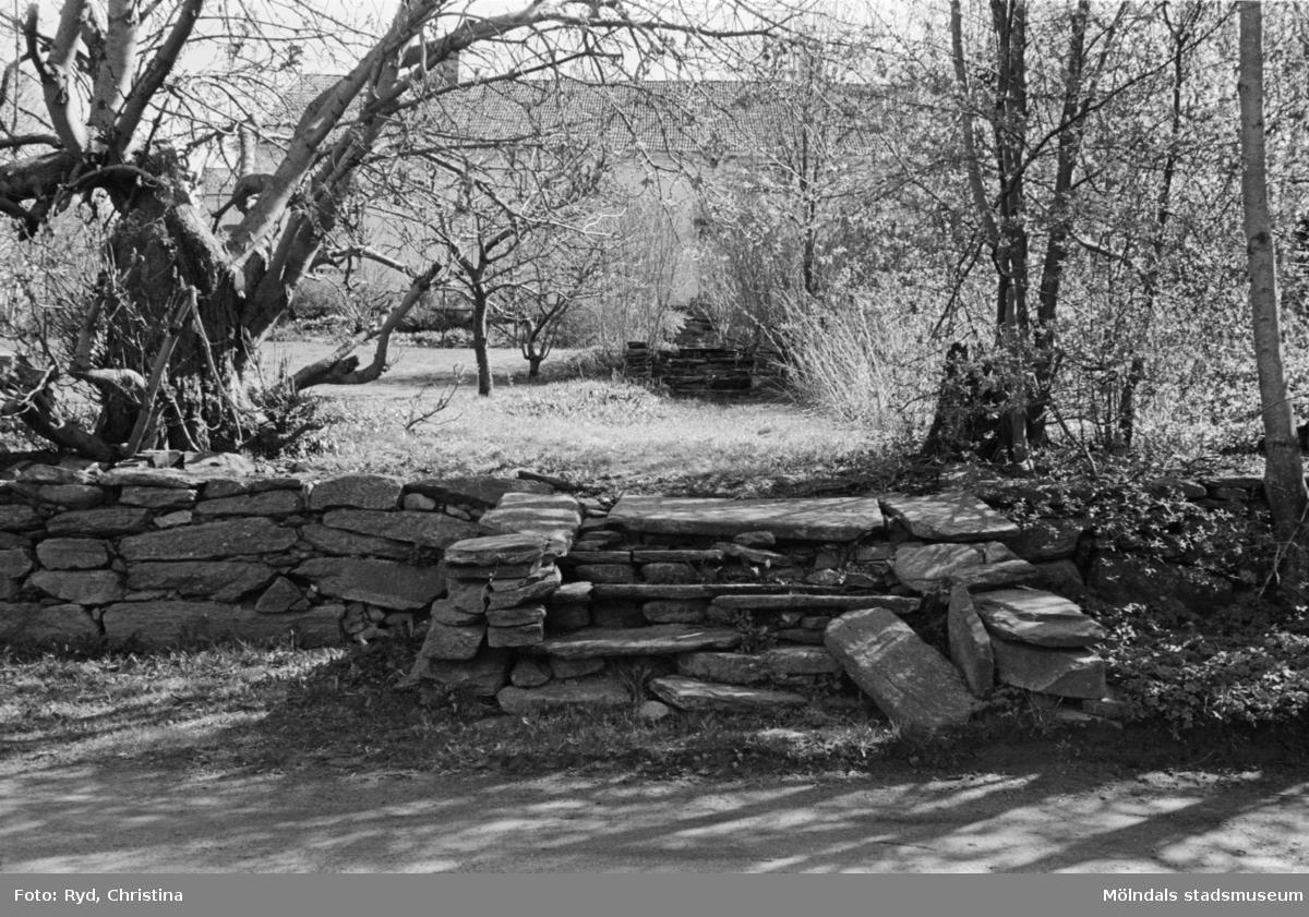Trädgårdstrappan till Eklunds gård i Sagered, 1991.