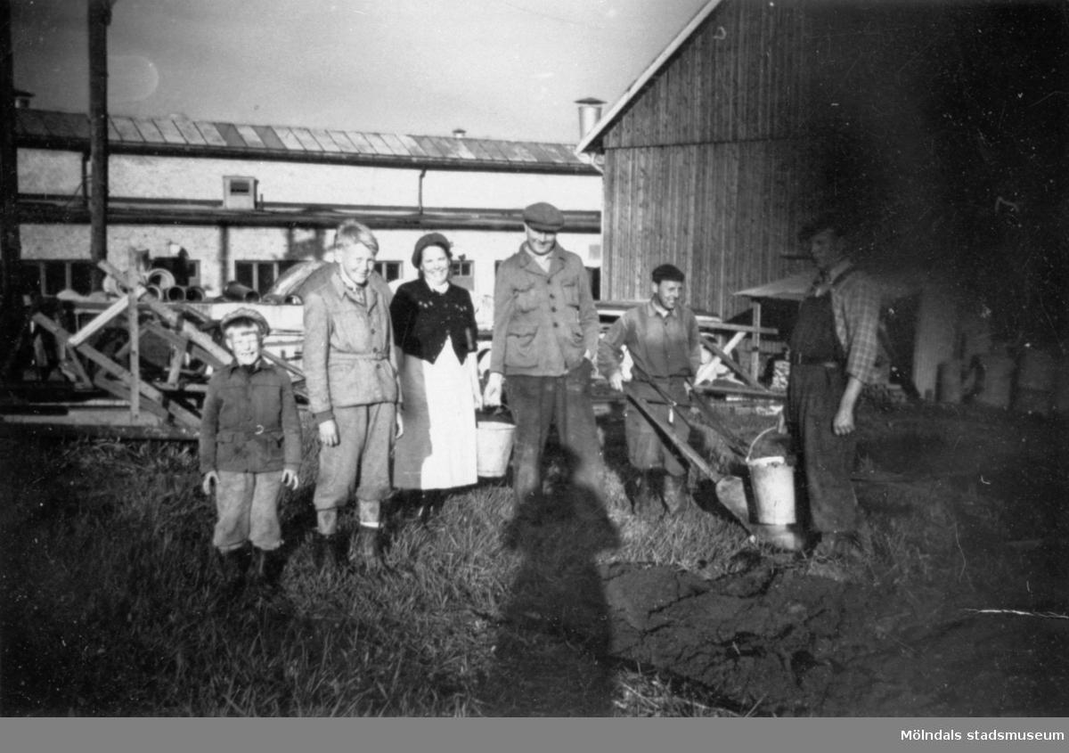 """Potatisupptagning borta vid fabriken i Lindome år 1950-51. Familjen Elis Andersson (sonen Rolf andre från vänster), Evert Karlsson och Karl-Erik """"Pysen"""" Severinsson."""