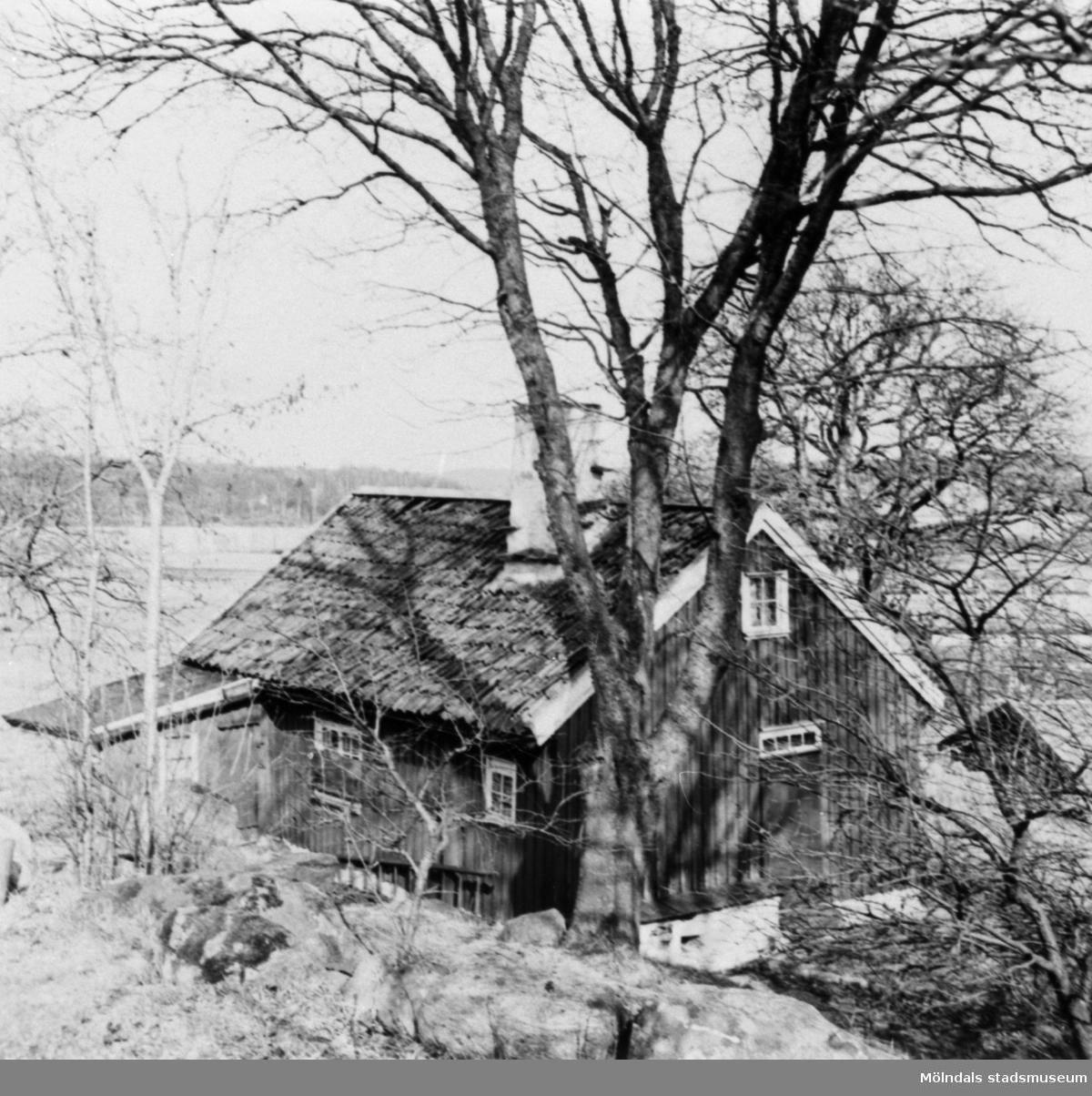 """Backmans"" stuga i Annestorp, 1951."