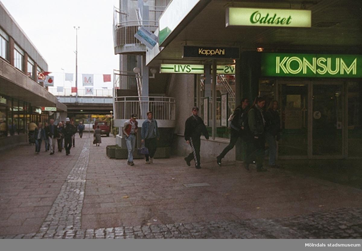 MMF1996:1246-1263 Åbyskolan 8A grupp 1.MMF1996:1264-1273 Åbyskolan 8A grupp 2.Se även MMF 1996:0913-0940.