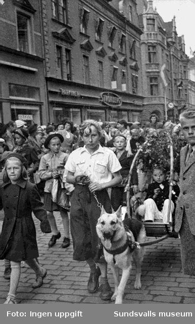 Kurt Lundgren som 14-åring med sin hund Atos deltager i Barnens Dags-tåget. Hunden tävlade både i draghundsklassen och i dressyr. Det var Kurts far John som byggde kortegevagen.