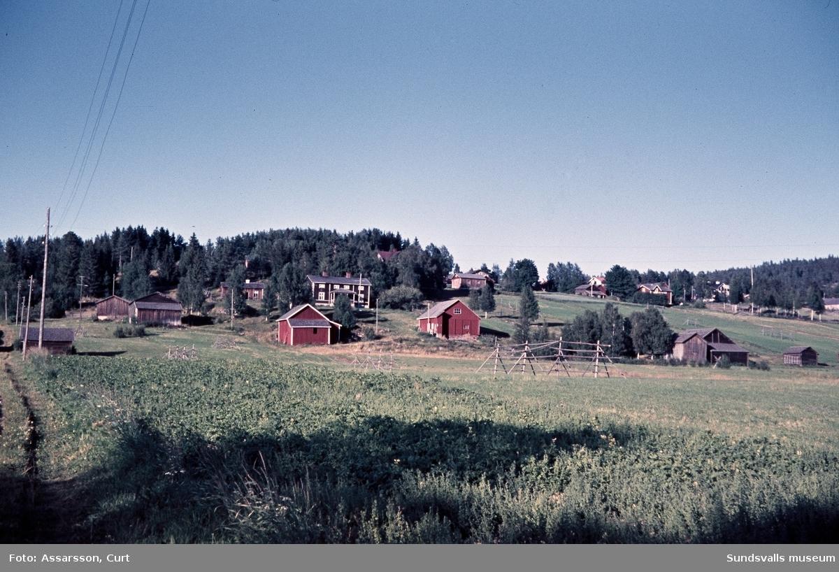 Lantgård i Harvom.