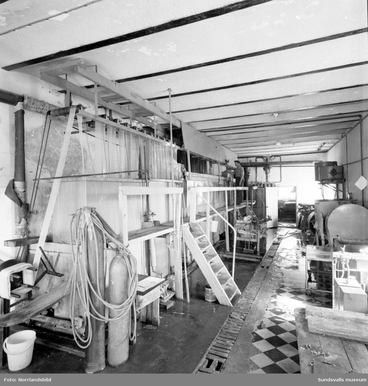 Korvskinnsfabriken på Alnö, exteriör- och interiörbilder.