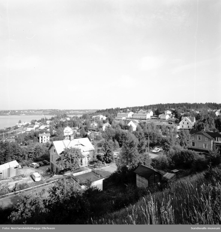 Översiktsbilder över bostadsbebyggelse i Gångviken, Skön.