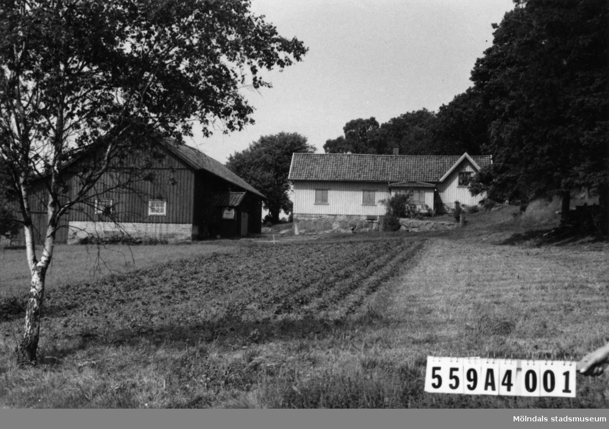 Byggnadsinventering i Lindome 1968. Högsered 1:3. Hus nr: 559A4001.  Benämning: permanent bostad och ladugård. Kvalitet: god. Material: trä. Tillfartsväg: framkomlig.