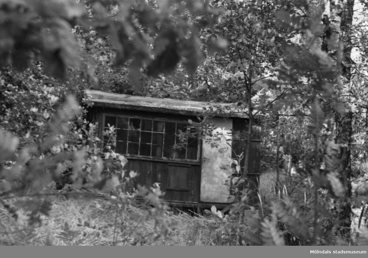Byggnadsinventering i Lindome 1968. Greggered 1:31. Hus nr: 092A1009. Benämning: fritidshus och redskapsbod. Kvalitet: dålig. Material: trä. Övrigt: nästan omöjligt att hitta, ingen stig. Tillfartsväg: ej framkomlig!!!