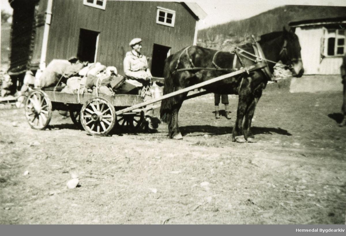 Ola O. Grøndalen med påskebagasje frå Klanten ein snøfattig påske på 1930-talet.