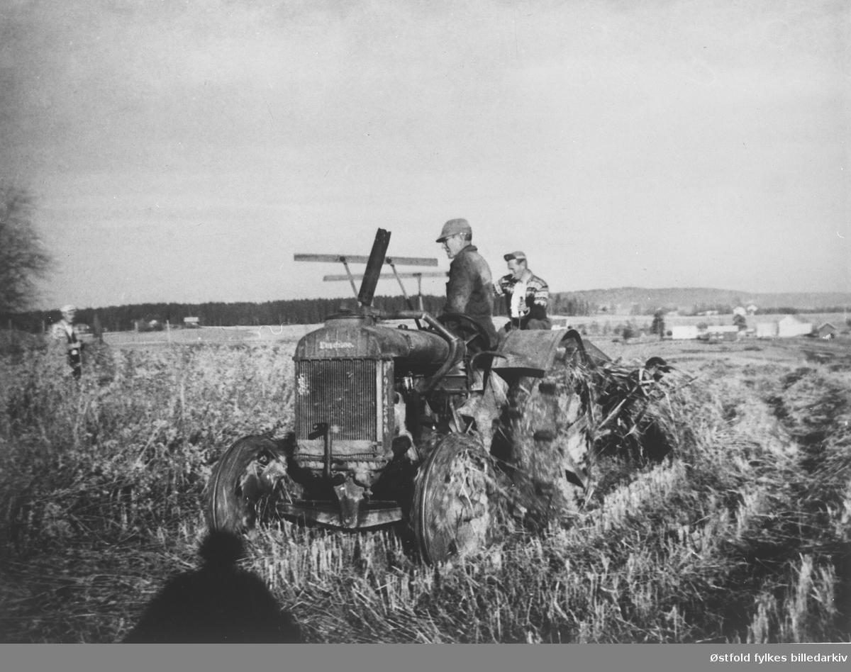 """Skjæring av havre på """"ilehøl-stykket"""" med traktor i oktober 1962. På Jakobshaugen 45/1-3.  Olaf Syversen, Johan Kr. Taraldrud og sønnen Reidar.  Det var våt og sein høst. Vanlig gummihjuls-traktor, måtte erstattes med """"jern-hesten"""" for i det hele tatt å få kjørt i bakkene. Det ble satt opp hesje, som sto til """"bjønn-tørken"""" gjorde det mulig å kjøre i hus."""