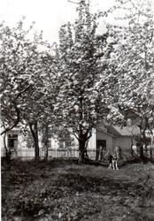 Cochegården (Rådhuset), Brevik, Telemark (interiør og ekster