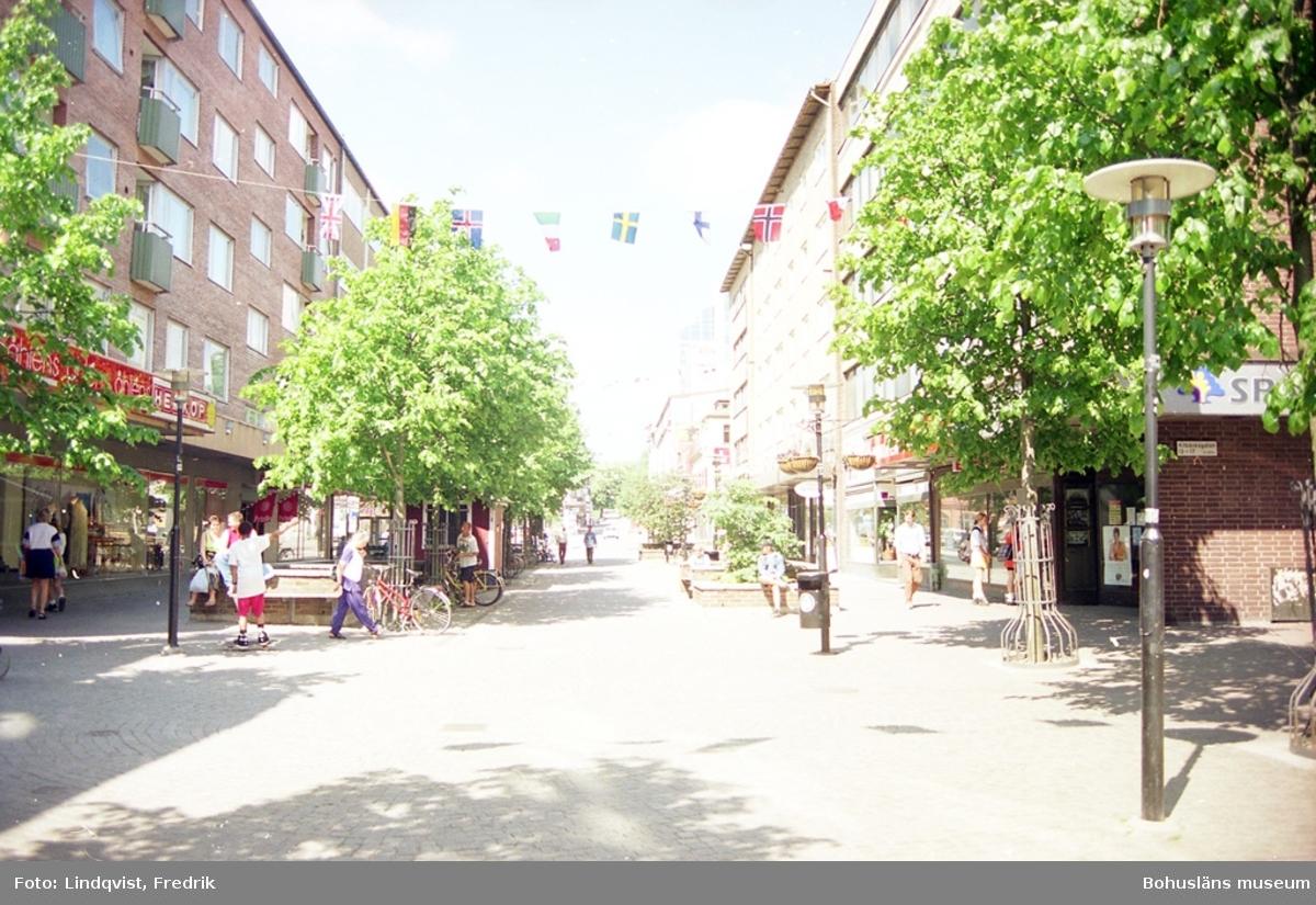 """""""Parker och trädgårdar i rutnätstaden Uddevalla""""."""