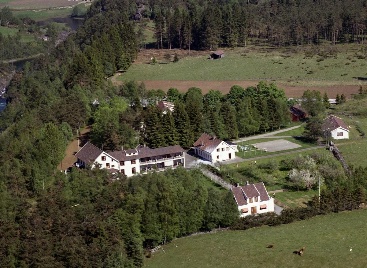 Sanatorium hus skog mark kyr veg elv