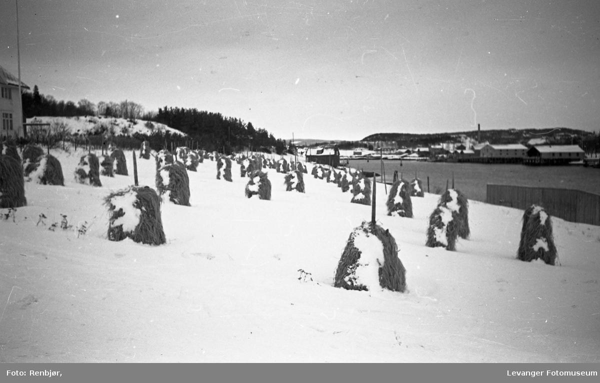 Brygger og hus langsmed Levangersundet. Kornstaur i snø ved Stavrums hus og fjæra ved Sundbrua.