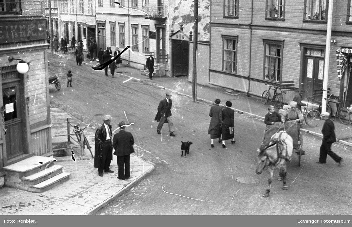 Folk på Leiknæshjørnet titter på hunden Bamse som har slått seg ned i gata.