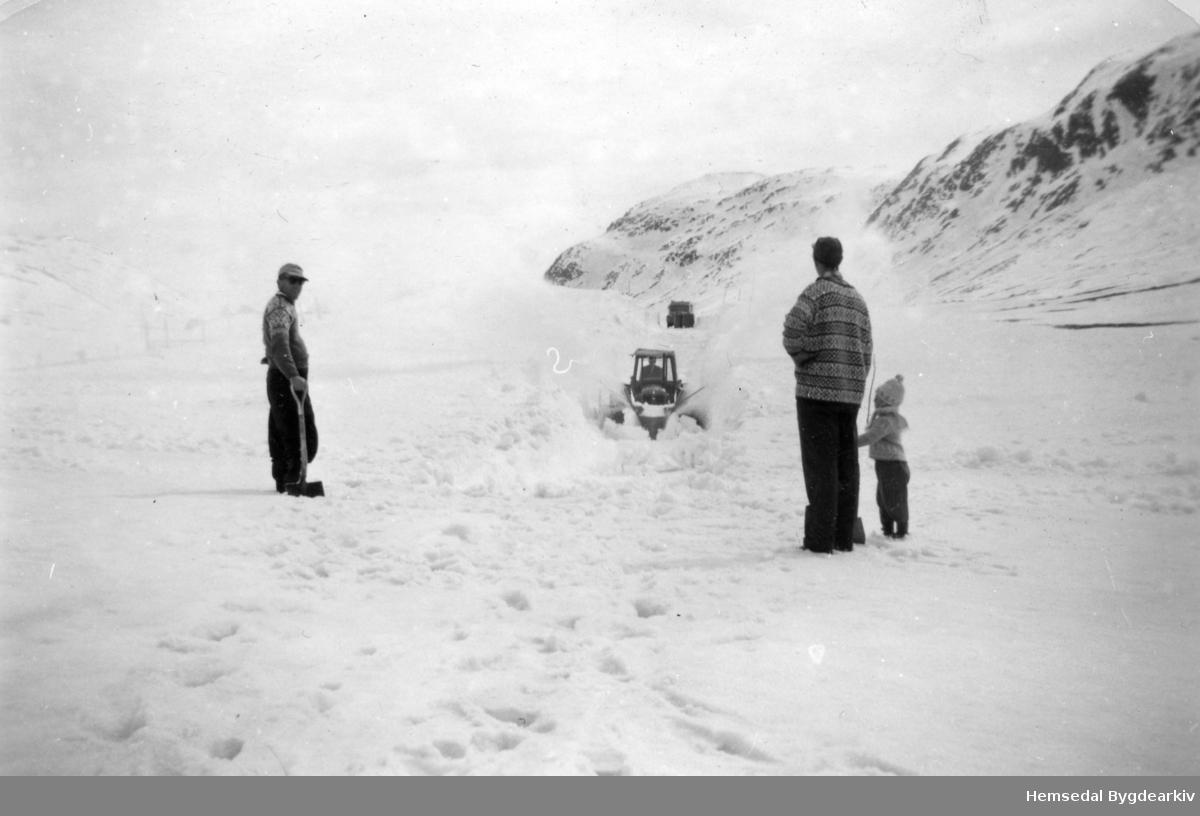 Snørydding på Hemsedalsfjellet, nordom Bjøberg, på stigninga opp mot Slettestølen, i 1959,