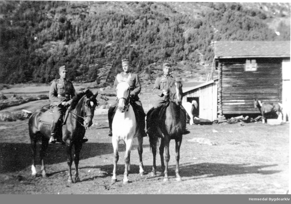 Tyske soldatar. Tyskarane hadde oppstalla 11-16 hestar på garden Jordheim Nilsongard i Hemsedal. Kyrne måtte gardsfolket då ha på stølen.