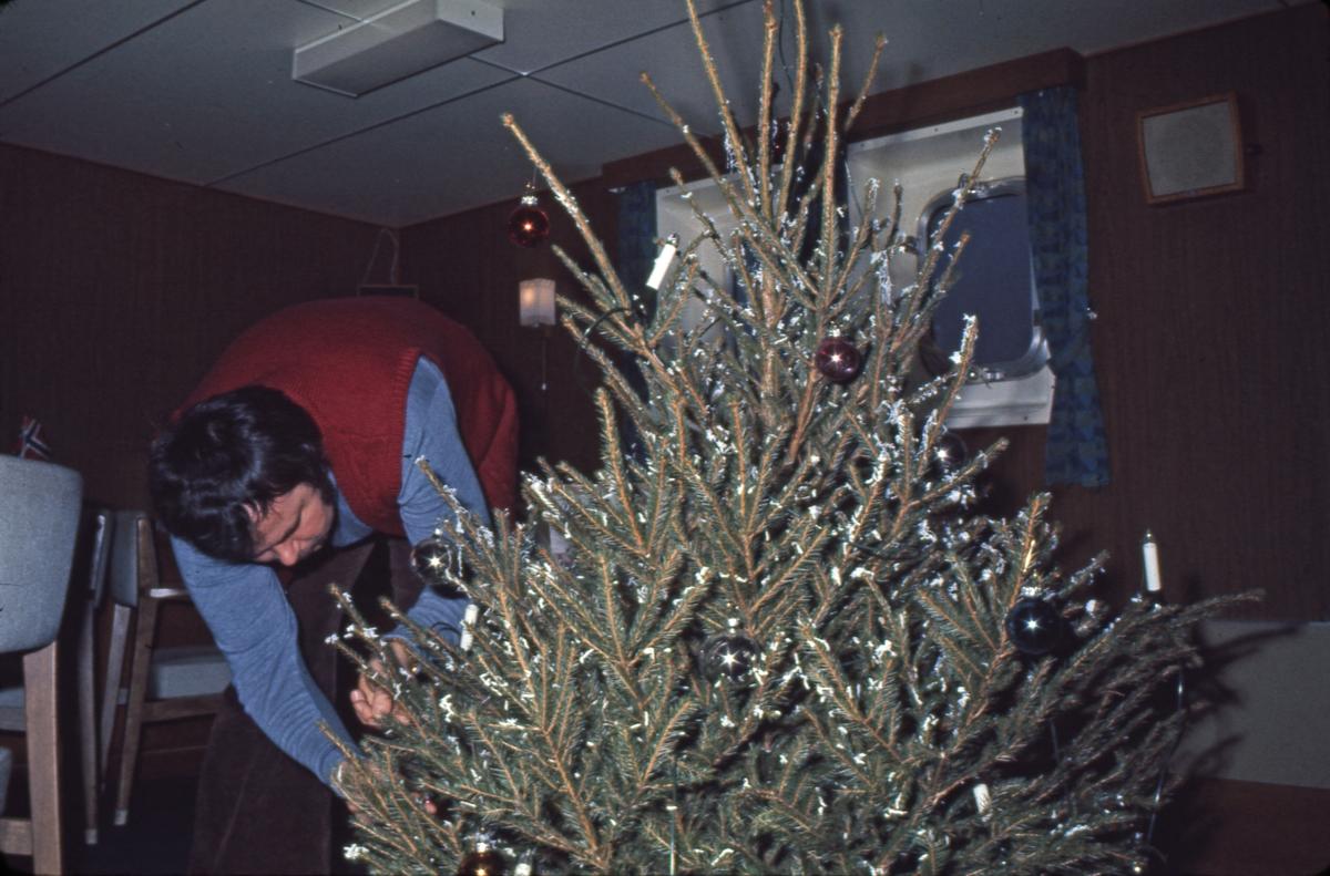 Juletreet bringes ombord i M/S 'Vikara' (b.1973, Mitsubishi Heavy Industries Ltd., Kobe, Japan).
