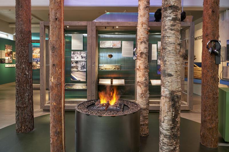 Interiør i utstillingen Tråkk i mangfoldig natur. 2015 (Foto/Photo)