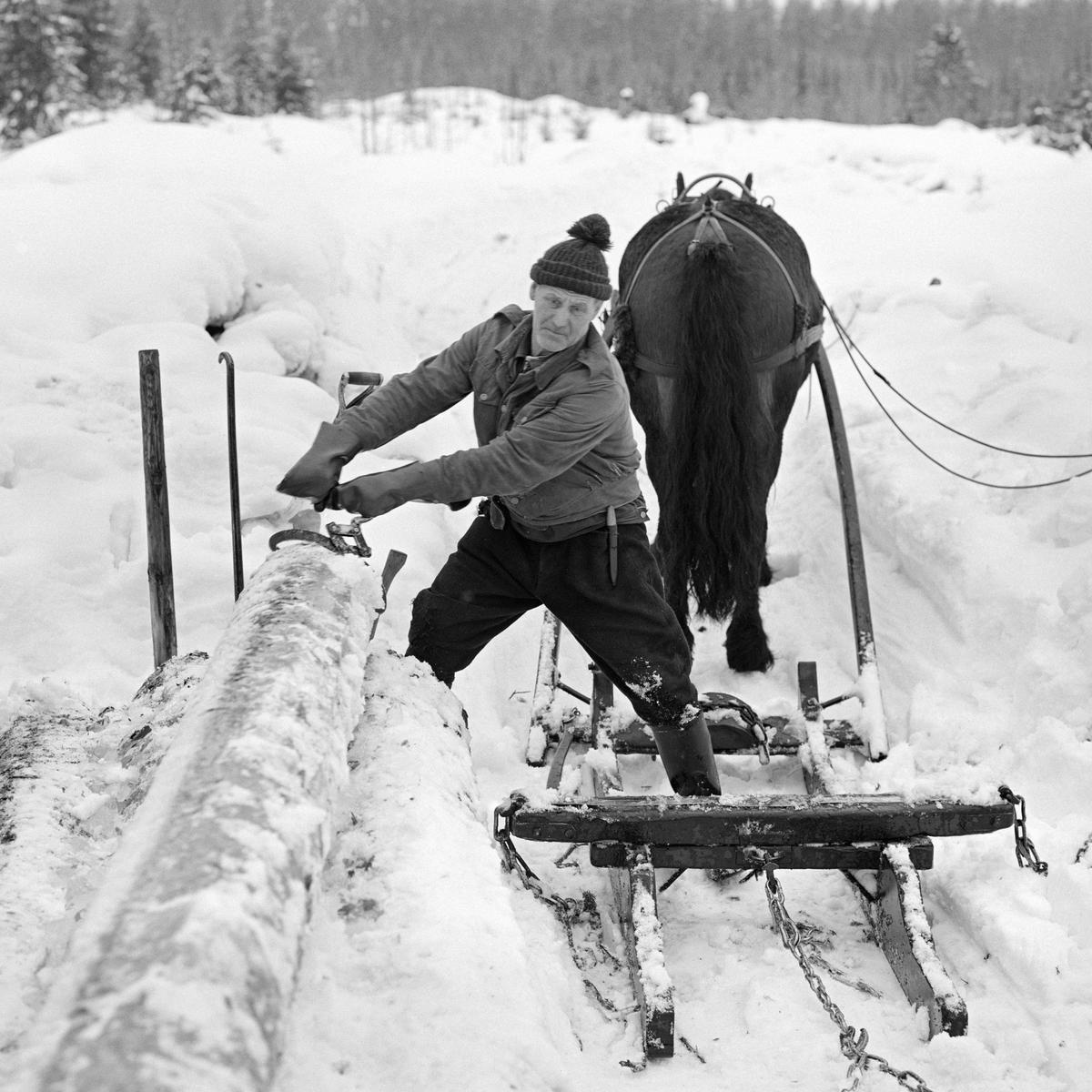 Skogsarbeider Johan Rasch i Svartholtet, Elverum, 1975