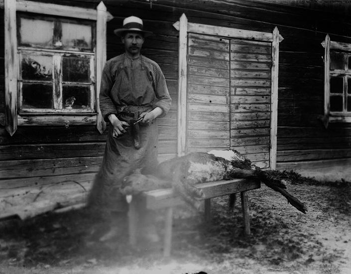 Slakt,  en man och en kalv framför en byggnad.Slaktaren Robert Johansson.