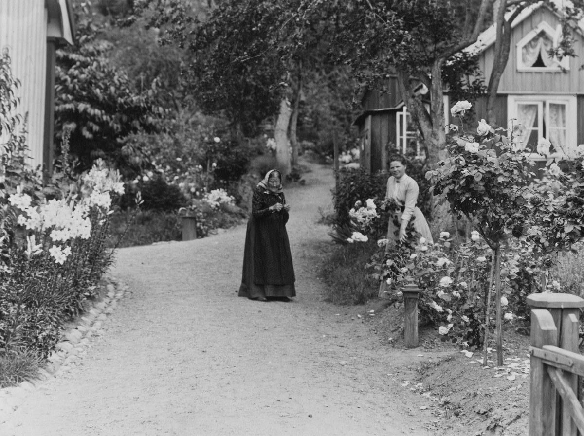 Gårdsinteriör från Zanders i Gränna. I trädgården står Fru Allard och dottern.