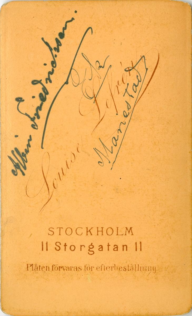 Porträtt av Albin Friedrichson, officer vid Livregementets husarer K 3.